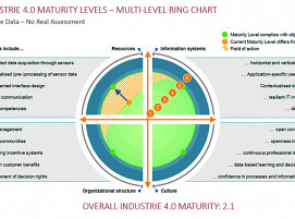 """Multi Level Ring Chart"" – Ergebnisse des I4.0-Assessments"